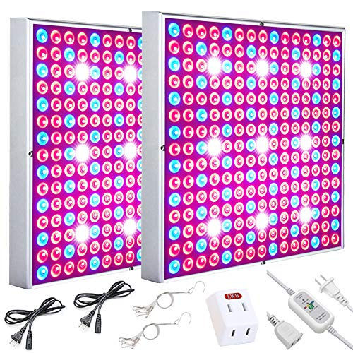 LED Grow Light Plant