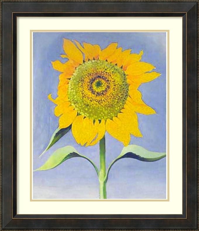Amazon.com: Framed Art Print \'Sunflower, New Mexico, 1935\' by ...