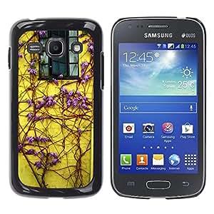 Be Good Phone Accessory // Dura Cáscara cubierta Protectora Caso Carcasa Funda de Protección para Samsung Galaxy Ace 3 GT-S7270 GT-S7275 GT-S7272 // Lilac Purple Vines House Window Y