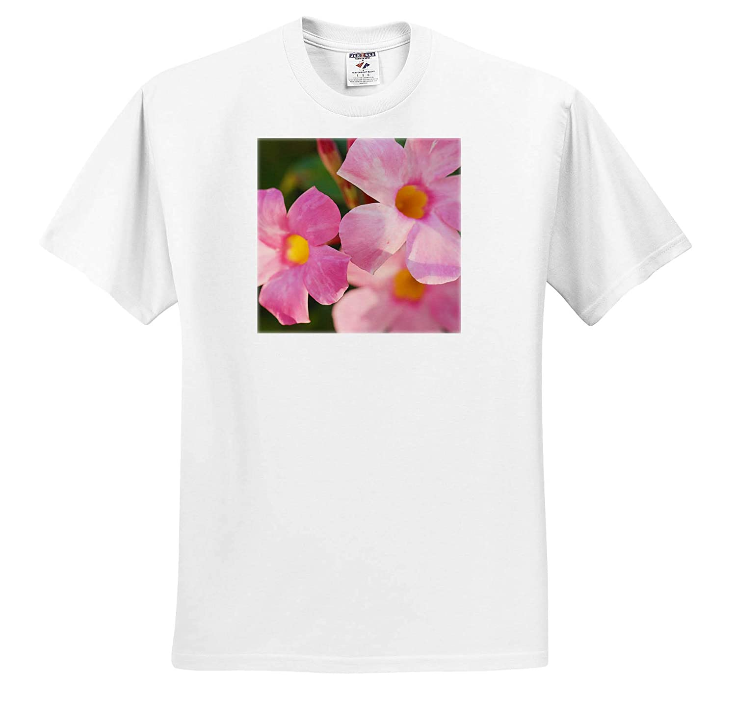 Flowers 3dRose Stamp City - Adult T-Shirt XL Macro Photograph of a Cluster of Pink Mandevilla Flowers ts/_312236