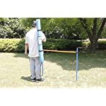 PAWISE Pet Dogs Outdoor Games Agility Exercise Training Equipment Agility Starter Kit Jump Hoop Hurdle Bar 12