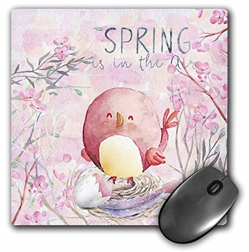 3dRose Uta Naumann Sayings and Typography - Cute Pink Spring Bird Animal Illustration - Spring In Air - MousePad (Spring Air Natures Rest)