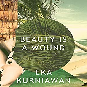Beauty Is a Wound Audiobook