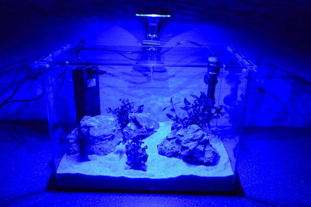 Wave caja Orion 40 Nano Acuario Completo Acuario Mini acuario + ...