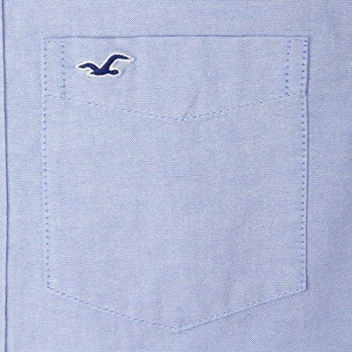 HOLLISTER 正規品 メンズ 半袖ボタンダウンシャツ BUTTON DOWN S-SHIRT 325-253 並行輸入品