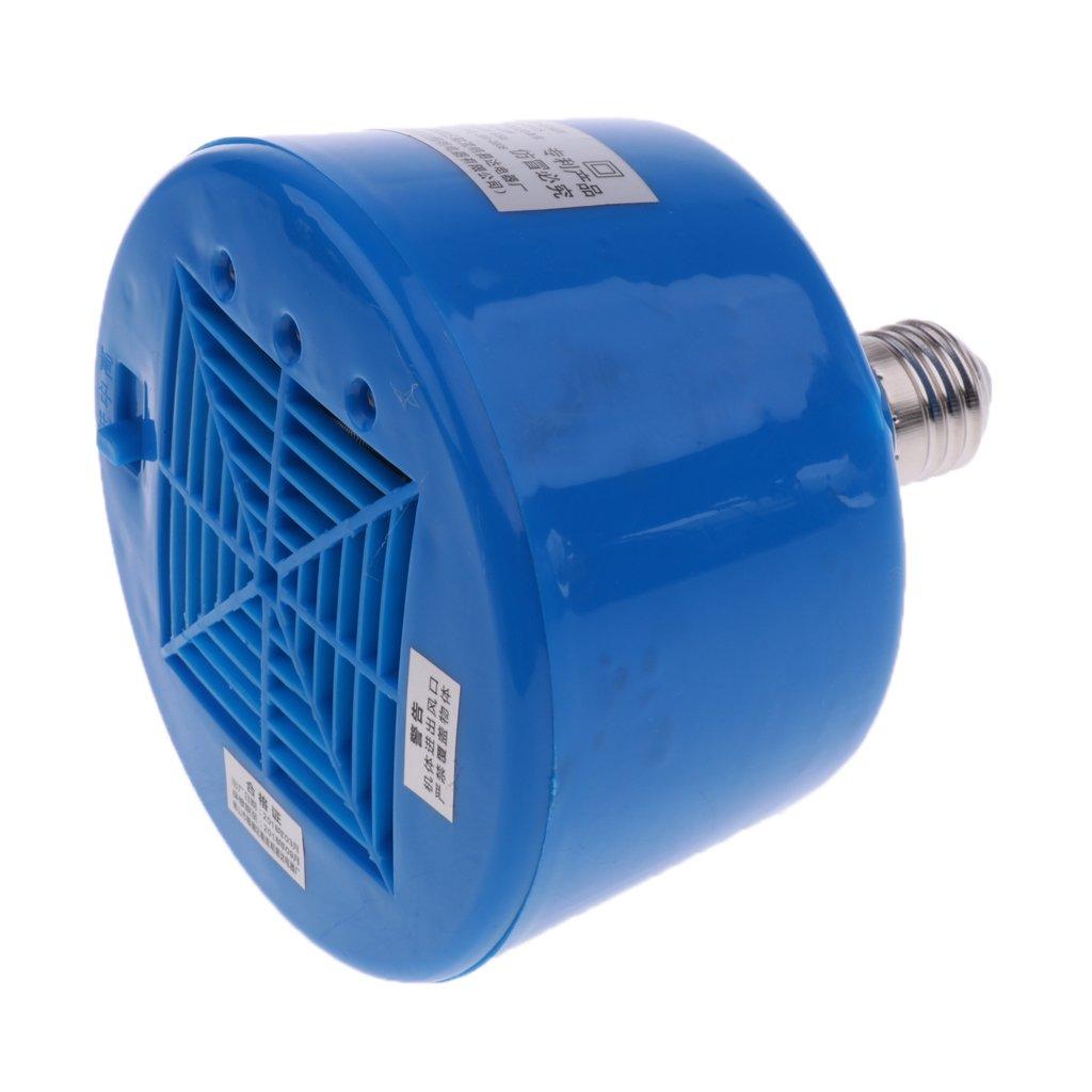 Homyl Ampoule Terrarium Reptile E27 Lumière Infrarouge Lampe Chauffante pour Volaille Poulailler Bleu