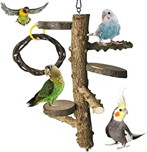 PINVNBY Nature Bird Perch Wood StandBranch Platform Hanging Swing Toys Parrot Paw Grinding Stick Parakeet Climbing Cage Accessories for Budgie Cockatiels Conure Finches Exercise