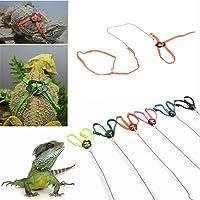 New Arrival Fashion Adjustable Reptile Lizard Harness Leash Adjustable Multicolor Light Soft Multi-Color