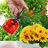 Small Red Transparent Ribbed Glass Vintage Style Plant Water Mister Spray Bottle with Top Pump