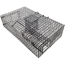 Rat Traps: Rat Traps Amazon