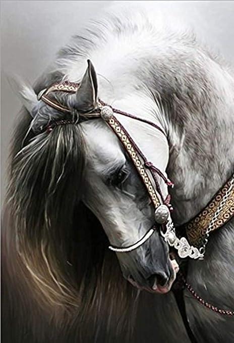 5D DIY Full Drill Diamond Painting Horse Cross Stitch Embroidery Mosaic Kit  #Z