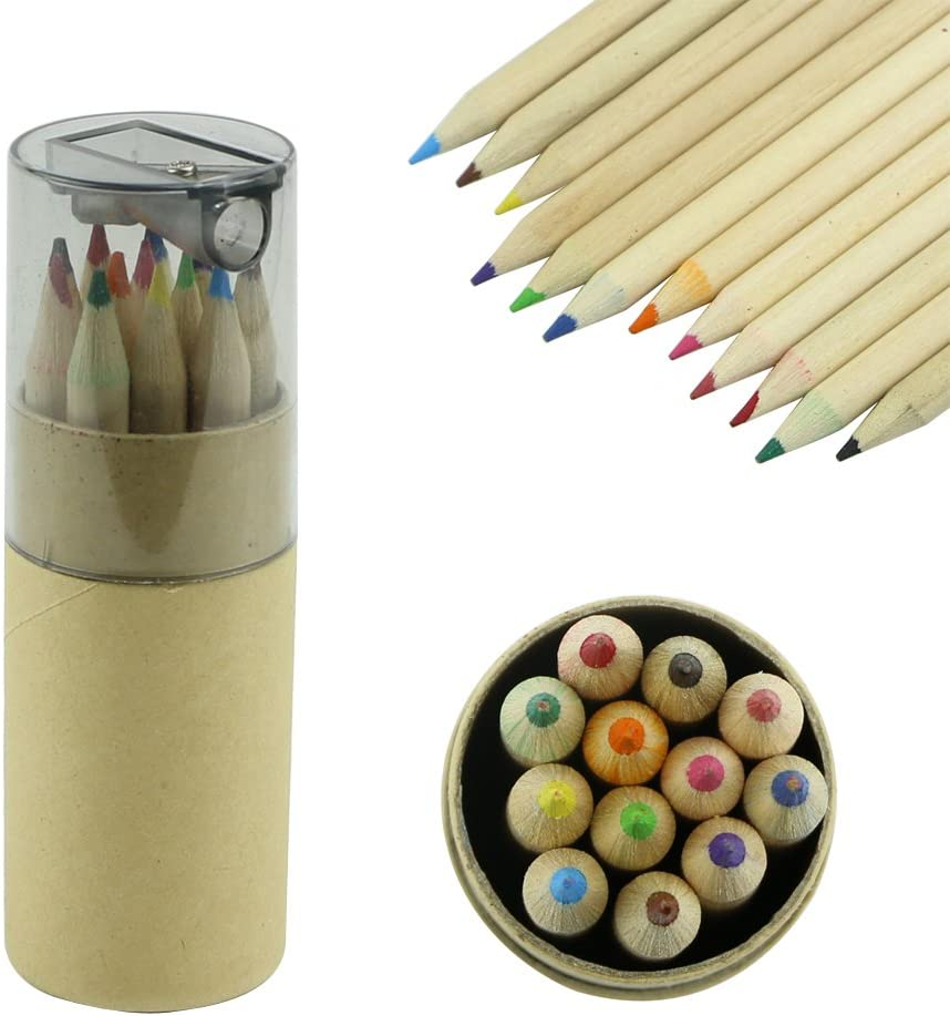 Set of 12 Assorted Color Cute Drawing Pencil Set Wood Color Pencils Can Kid Gift