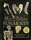 img - for Bone Collection: Human Body book / textbook / text book