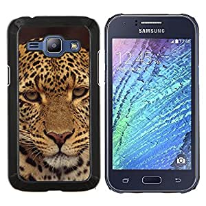 TECHCASE---Cubierta de la caja de protección para la piel dura ** Samsung Galaxy J1 J100 ** --Leopard Decepcionado Furry Animal salvaje