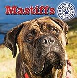Mastiffs, Maria Nelson, 1433957884