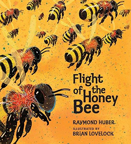 Flight of the Honey Bee (Read and Wonder)