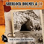 Der Schrei der Banshee 1 (Sherlock Holmes & Co 26)   Oliver Fleischer