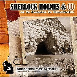 Der Schrei der Banshee 1 (Sherlock Holmes & Co 26)