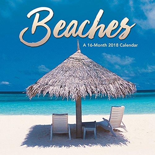 Beaches 2018 Mini Calendar