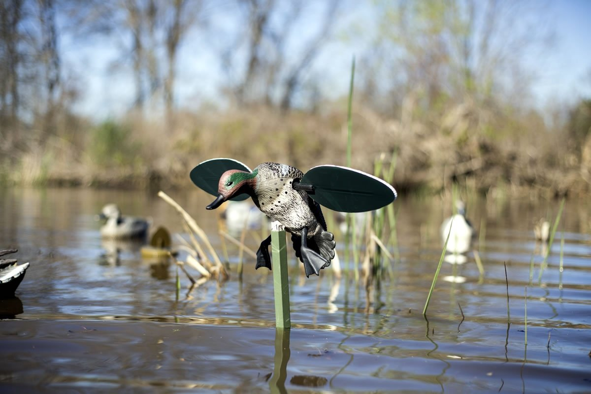 MOJO Outdoors Green Wing Teal Motion Duck Decoy by MOJO Outdoors (Image #4)