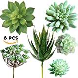 #4: Supla Pack of 6 Assorted Artificial Echeveria Succulent Picks Textured Faux Succulent Pick Agave Cactus in different Green for Fake Succulent Bouquet Floral Arrangement