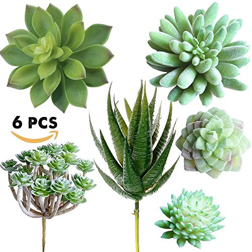 Supla Pack of 6 Assorted Artificial Echeveria Succulent Picks Textured Faux Succulent Pick Agave Cactus in different Green for Fake Succulent Bouquet Floral Arrangement by Supla