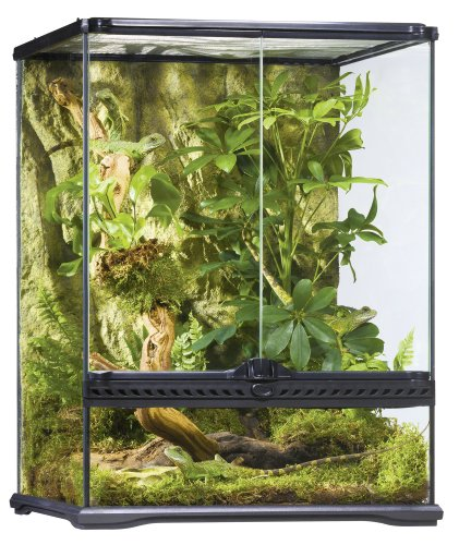 Exo Terra Glass Terrarium, 18 by 18 by - Reptile Aquarium