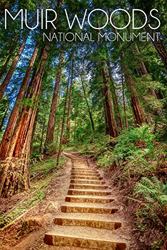 Muir Woods National Monument, California - Stairs Photograph (12x18 SIGNED Print Master Art Print w/Certificate of Authenticity - Wall Decor Travel Poster)