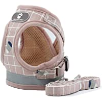 BVAGSS Breathable Puppy Vest Harness Adjustable Pet Lead Chest Walking Leash for Dog Cat JA005 (M, Pink)