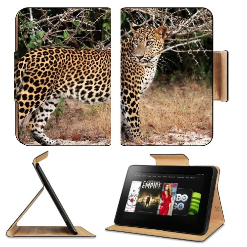 Leopard Jaguar Cat Panthera Predator Jungle Wild Animal Amazon Kindle Fire HD 8.9 [2012 Version] Flip Case Stand Magnetic Cover Open Ports Customized Made to Order Support Ready Premium Deluxe Pu Leather 9 13/16 Inch (250mm) X 6 7/8 Inch (175mm) X 11/16 Inch (17mm) Liil Professional Kindle_fire Cases Kindle8.9 Accessories Build Model Graphic Background Covers Designed Model Folio Sleeve HD Template Designed Wallpaper Photo Jacket Luxury Protector