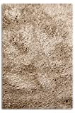 Sultansville Colorville Collection CVL-CP-57 High-Pile Soft Shag Area Rug,...