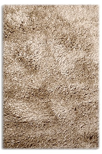 Sultansville Colorville Collection CVL-CP-57 High-Pile Soft Shag Area Rug, Cappuccino