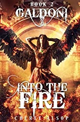 Galdoni Book Two: Into the Fire (English Edition)