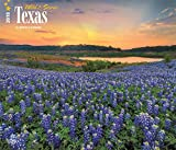 Texas, Wild & Scenic 2018 14 x 12 Inch Monthly Deluxe Wall Calendar, USA United States of America Southwest State Nature