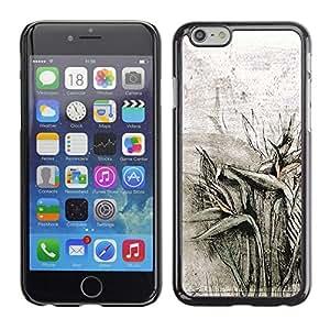 Caucho caso de Shell duro de la cubierta de accesorios de protección BY RAYDREAMMM - Apple iPhone 6 Plus 5.5 - Field Plants Pencil Drawing