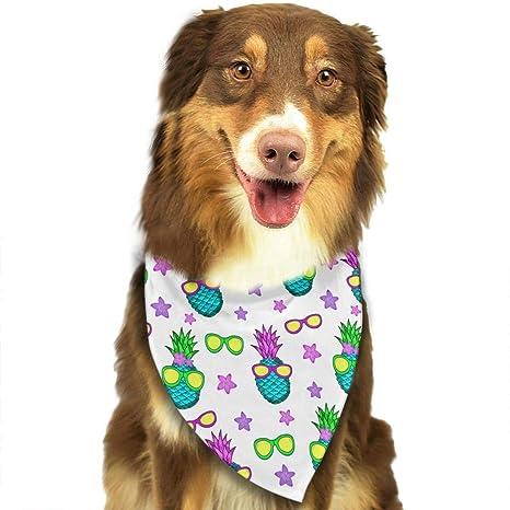 Wfispiy Coloridas Piñas, Gafas de Sol Patrón Pascua Perro ...