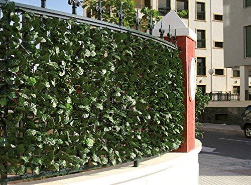 Arelle evergreen laurel mt. 150x300