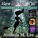 How Witch It Is: Wicked Witches of the Midwest, Books 1-3 Hörbuch von Amanda M. Lee Gesprochen von:  Aris