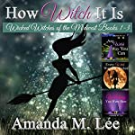 How Witch It Is: Wicked Witches of the Midwest, Books 1-3 | Amanda M. Lee