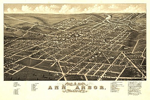 Ann Arbor, Michigan - (1880) - Panoramic Map (12x18 Art Print, Wall Decor Travel Poster)