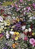 Tropica - semi fiori selvatici sud inghilterra garden cottage (34 specie) 1000