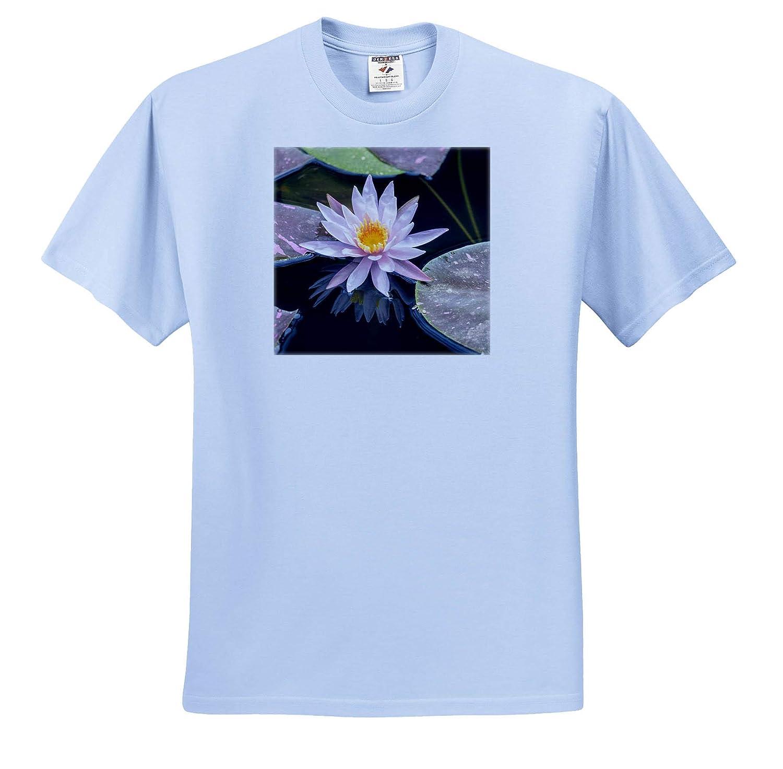 3dRose Danita Delimont Adult T-Shirt XL Hardy Waterlily ts/_313915 Flowers