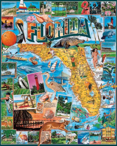 White Mountain Puzzles Florida - 1000 Piece Jigsaw - Potter Harry Make Costumes To Easy