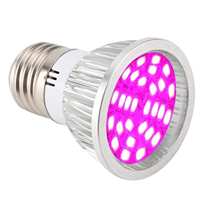 6W LED Grow Light para plantas de interior Lámpara de cultivo 28pcs LED Full Spectrum Luces