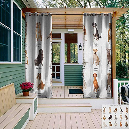 leinuoyi Dog, Outdoor Curtain Waterproof, A Group of