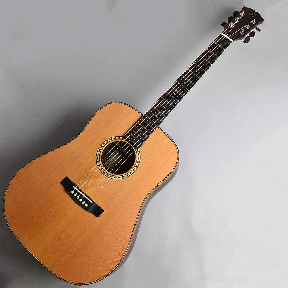 正規品販売! Dowina DAN-D-C DAN-D-C B07KWYNK93 Dowina アコースティックギター ドウイナ B07KWYNK93, ディスカウント みやこ:249c0ba8 --- lanmedcenter.ru