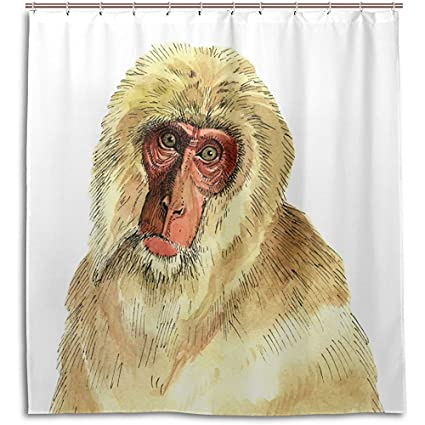 Jubenlcai Drawing Monkey Shower Curtain 60 X 72 Inch Mildew Resistant Waterproof Polyester Decoration