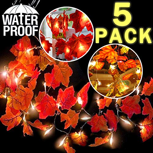 Outdoor Lighted Gifts in US - 6