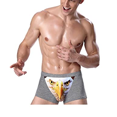 e84b10d39128e0 Men's Sexy 3D Wolf Owl Animal Print Boxers Briefs Stretch Underpants Grey  Owl Small