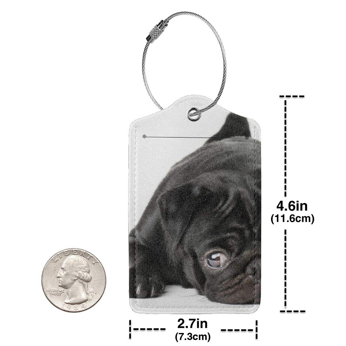 Black Pug Dog Travel Luggage Tags With Full Privacy Cover Leather Case And Stainless Steel Loop